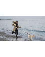 Biegam z psem - szybki poradnik dla początkujących